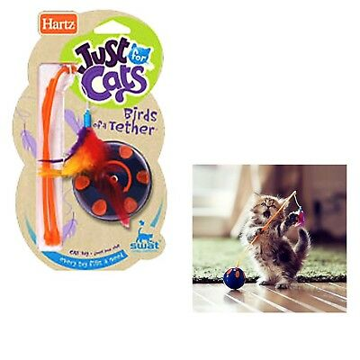 Hartz Birds Of Tether Wind Up Cat Kitten Toy Cats Crazy Fun Play Exercise