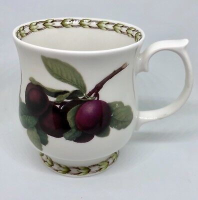 Queens Royal Horticultural Society Hookers Fruit Plum Coffee Tea Mug Bone China