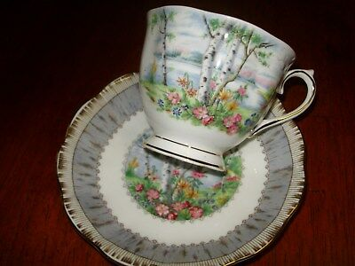 Royal Abert silver birch cup and saucer(duo)