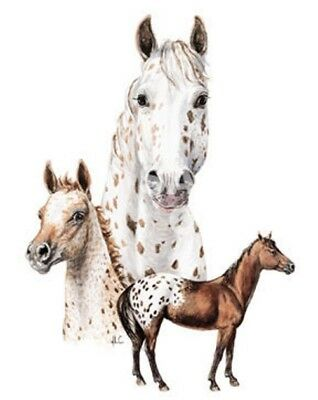 horse appaloosa leopard t-shirt western cowboy cowgirl youth toddler US size