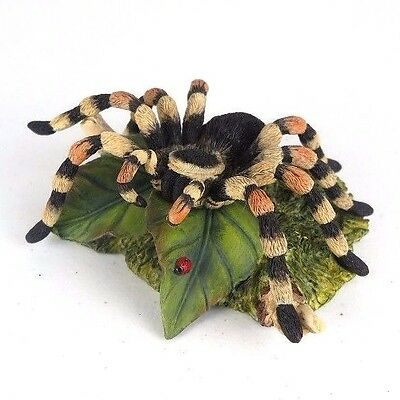 "Tarantula Spider Detailed Collectible Figurine Miniature Statue 5.5""W New in Box"