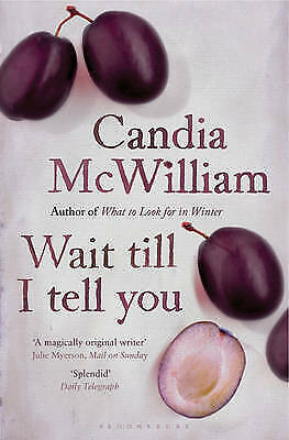 Wait Till I Tell You by Candia McWilliam (Paperback) New Book