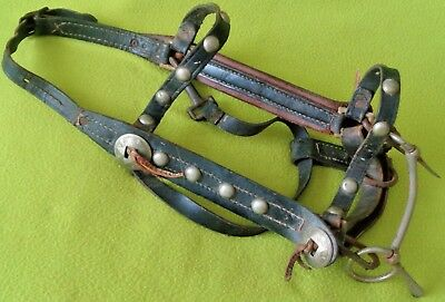 Neat OLD Vintage Spotted Horse BRIDLE With Slotted Star CONCHOS & Marked BIT~NR