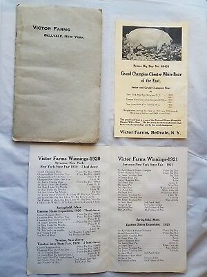 Vintage Victor Farms Champion Breeders Chester White Swine Pig Boar booklet 1919