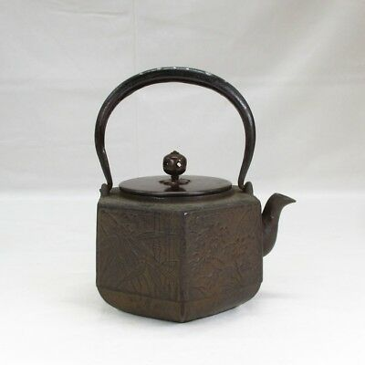 F843: High-class Japanese iron kettle with good relief pattern and silver inlay