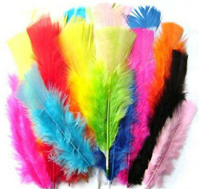 Craft Feathers Large Small Mixed Sizes Coloured Fluffy Childrens Arts and Craft