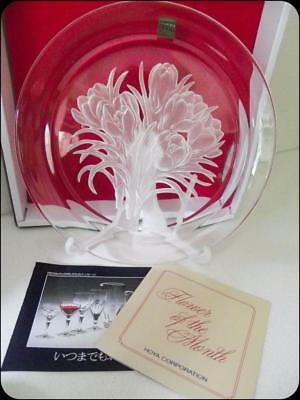Crocus etched Glass Lead Crystal Plate made by Hoya Japan signed - NEW IN BOX