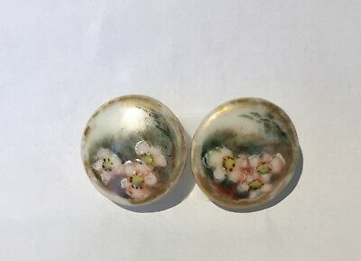 LOT 2 MATCHING ANTIQUE VICTORIAN PORCELAIN/CHINA BUTTONS~WILD ROSES w/ ENAMEL
