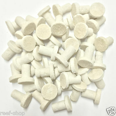 50 Frag Plugs Cured for Live Coral Propagation FREE USA SHIPPING!