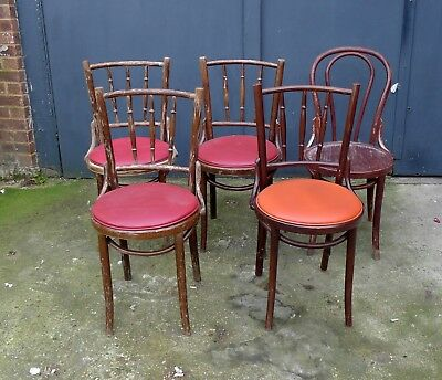 5 x  Bentwood Chairs