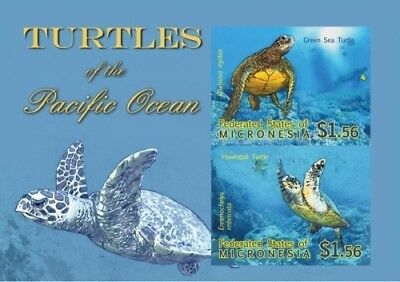 Micronesia- Turtles of the Pacific Ocean Stamps- Souvenir Sheet MNH