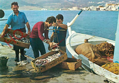 Picture Postcard:;Andros, Korthion, Fishermen In The Port