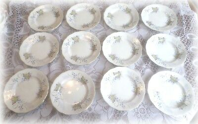 12 Royal Standard Angelique Dessert Plates Dish Bone China England