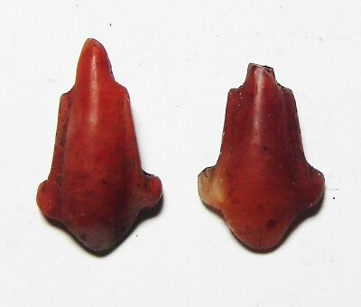 Zurqieh-As3193- Ancient Egypt, 19Th Dynasty, Carnelian Lotus Flower Pendants