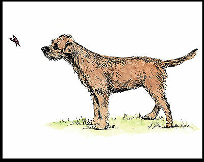 Border Terrier And A Butterfly Charming Vintage Style Dog Print Poster