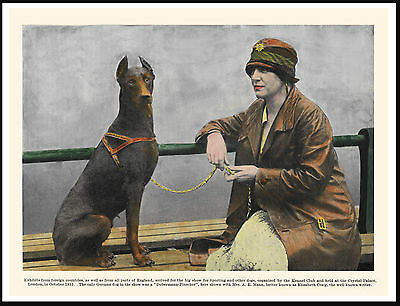 Doberman Pinscher Seated With Lady Owner Lovely Vintage Style Dog Print Poster