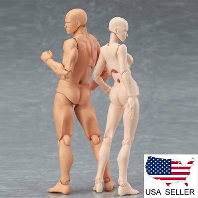 US S.H. Figuarts Figma CHAN & KUN Male Female PVC Movable Figure Body Model Toys