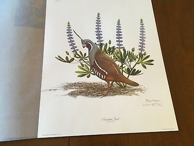 Ray Harm ( Mountain Quail ) signed lithograph print Frame House Gallery Mint