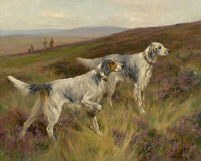 Painting Print On Canvas Ready to Hang Pointers Hunting Dogs Wardle PREMIERE