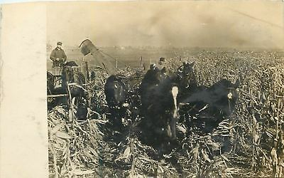 Horse-Drawn Combine In A Corner Field~Real Photo Postcard c1907