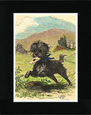 Affenpinscher Carrying Letter Lovely Image Vintage Style Dog Print Ready Matted