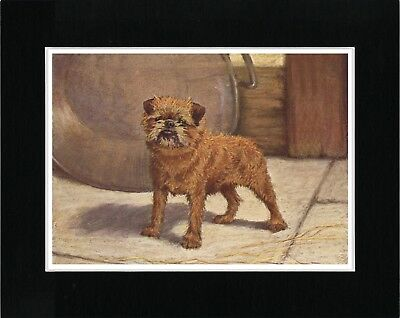 Brussels Griffon Lovely Vintage Style Dog Art Print Ready Matted