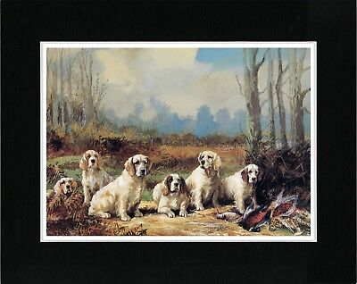 Clumber Spaniel Dogs Sat In A Row Great Vintage Style Dog Art Print Ready Matted