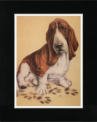 Basset Hound With Muddy Paws Lovely Vintage Style Dog Art Print Ready Matted