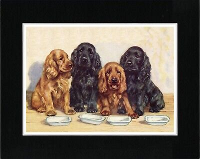 Cocker Spaniel Dogs Sat By Food Dishes Vintage Style Dog Art Print Ready Matted