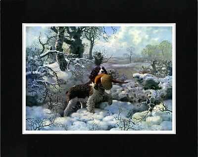 English Springer Spaniel Snow Scene Vintage Style Dog Art Print Ready Matted