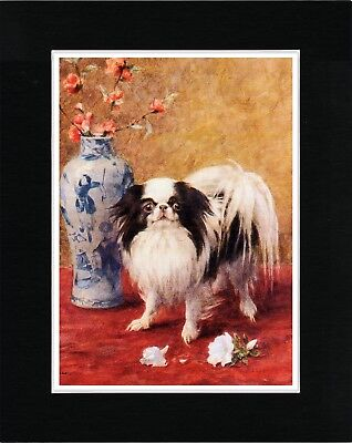 Japanese Chin And Vase Of Flowers Lovely Dog Art Print Matted Ready To Frame