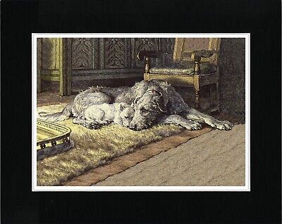 Irish Wolfhound And Westie Terrier By Fire Vintage Style Dog Print Ready Matted