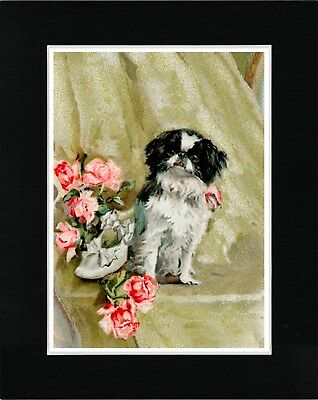 Japanese Chin Lovely Image Vintage Style Dog Art Print Ready Matted