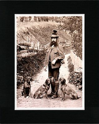 Hungarian Vizsla Man And His Dogs Vintage Style Dog Print Matted Ready To Frame