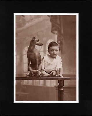 Italian Greyhound And Baby Lovely Vintage Style Dog Print Ready Matted