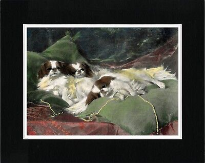 Japanese Chin Dogs On Cushions Lovely Vintage Style Dog Art Print Ready Matted