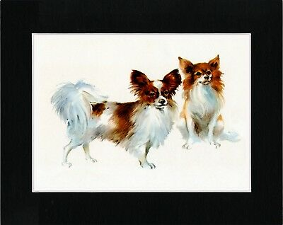 Papillon Two Dogs Lovely Vintage Style Dog Art Print Matted Ready To Frame