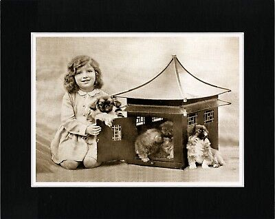 Little Girl And Pekingese Pups Charming Vintage Style Dog Print Ready Matted