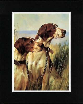 Pointer Two Dogs Head Study Lovely Vintage Style Dog Art Print Ready Matted
