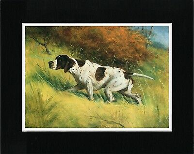 Pointer English Lovely Vintage Style Dog Art Print Ready Matted