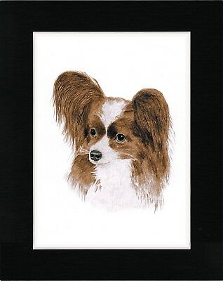 Papillon Charming Head Study Dog Art Print Matted Ready To Frame