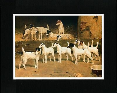 Smooth Fox Terrier Dogs The Totteridge Eleven Vintage Style Dog Art Print Matted