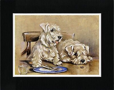 Sealyham Terrier Dogs Sat At A Table Vintage Style Dog Art Print Ready Matted