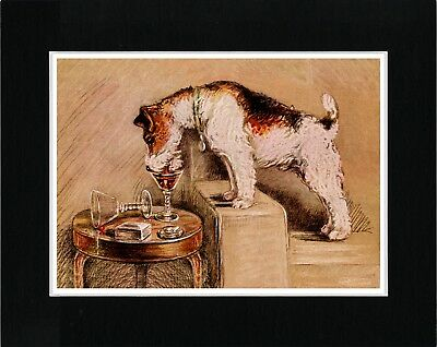 Wire Fox Terrier Drinks From Masters Glass Vintage Style Dog Print Ready Matted