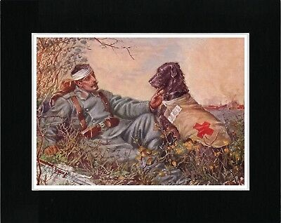Wounded Soldier Rescued By Irish Wolfhound Red Cross War Dog Art Print Matted