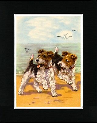 Wire Fox Terrier Dogs On Beach Vintage Style Dog Print Matted Ready To Frame