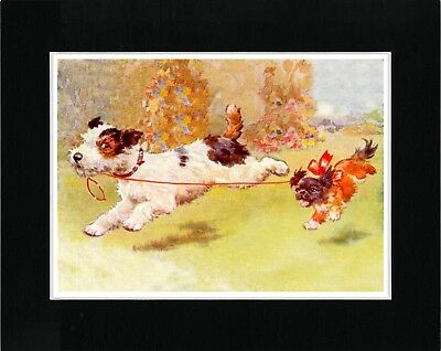Wire Fox Terrier Takes Pekingese For A Walk Vintage Style Dog Print Ready Matted