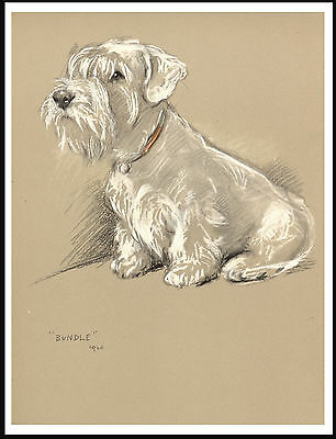 Sealyham Terrier Seated Dog Lovely Dog Print Poster