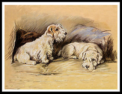 Sealyham Terrier Two Dogs In A Chair Lovely Vintage Style Dog Print Poster