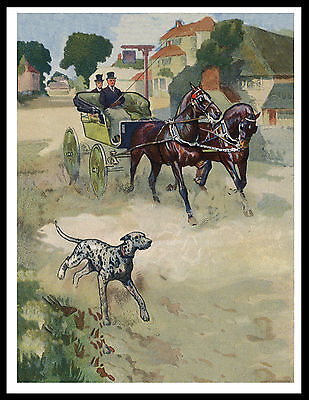 Dalmatian Running With Carriage Lovely Vintage Style Dog Art Print Poster
